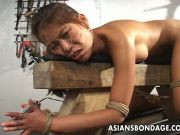 Lady tied and banged hard