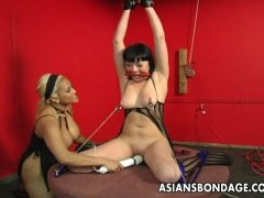Horny vixen banged in bondage